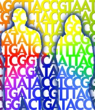 July 12. 2012 | 36th Annual Scientific Meeting of the Human Genetics Society of Australia