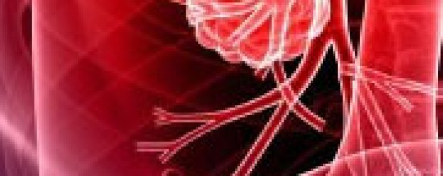 March 24-27. 2012   Inflammation-Induced Cancer Conference